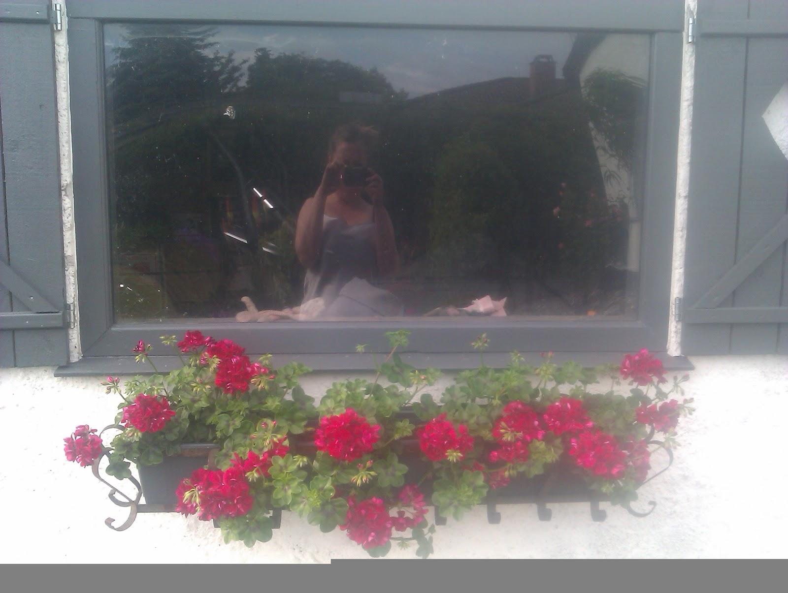 #993250 Anbefalede Villa Bianca: I år Elsker Jeg Pelargonier Igen Gør Det Selv Køkken Amager Landevej 5587 160012055587