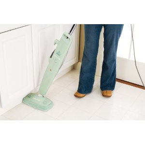 Best steam cleaner reviews for Bathroom 4 less review