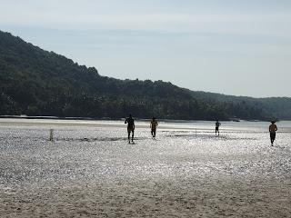 Cricket at tsunami Island
