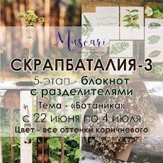 V этап СКРАПБАТАЛИИ-3