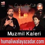 http://www.humaliwalayazadar.com/2015/10/muzmil-kaleri-nohay-2016.html
