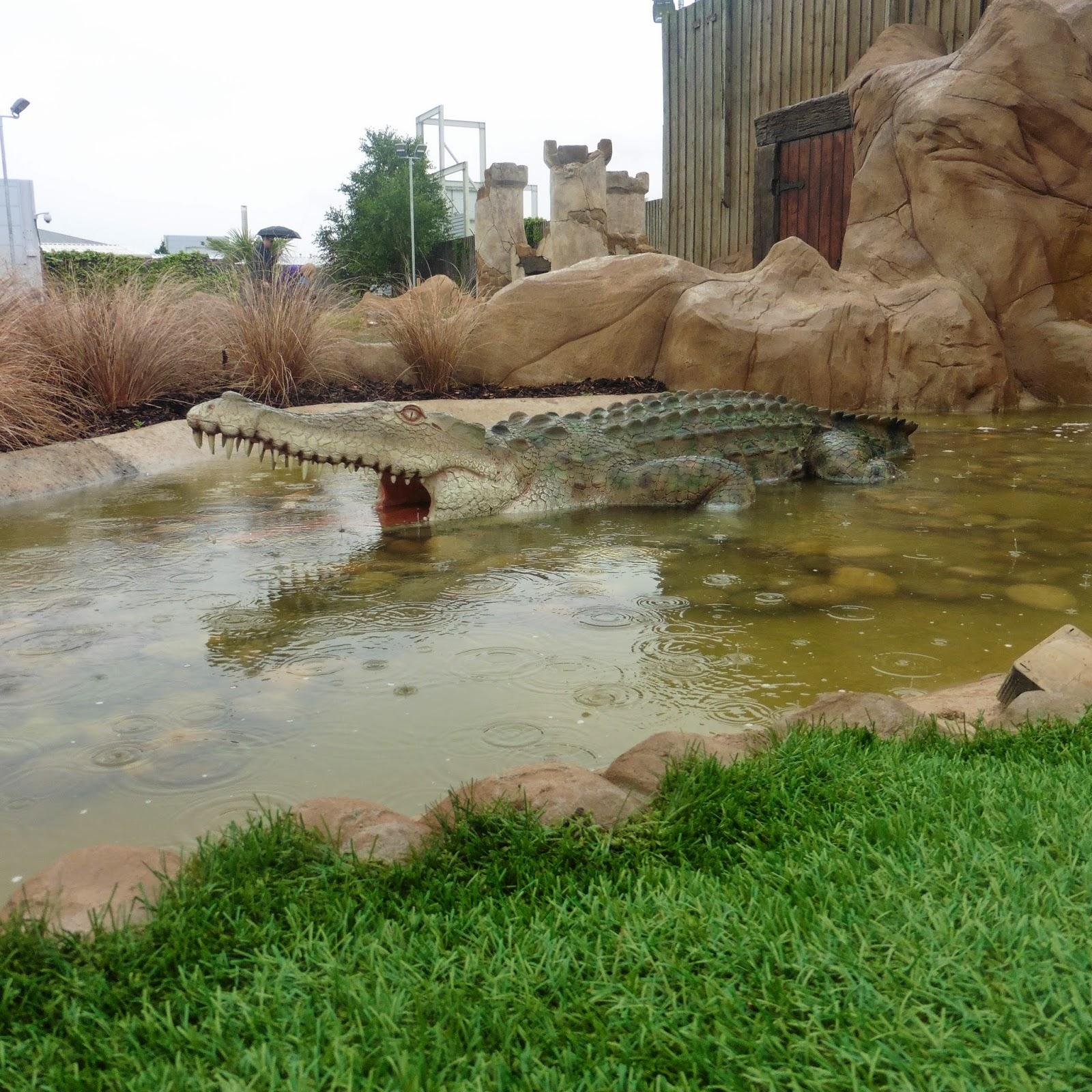 crocodile on golf course
