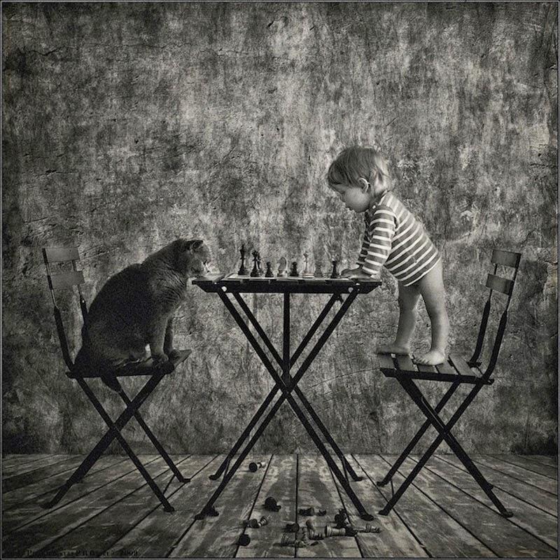 retratos de la amistad entre una niña y su gato