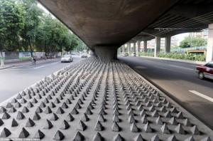 Cara Unik Dari China Agar Gelandangan Tidak Tidur Di Bawah Jembatan [ www.BlogApaAja.com ]