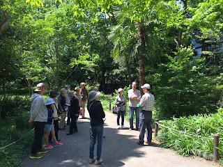 越谷アリタキ植物園 みどりの日無料開園