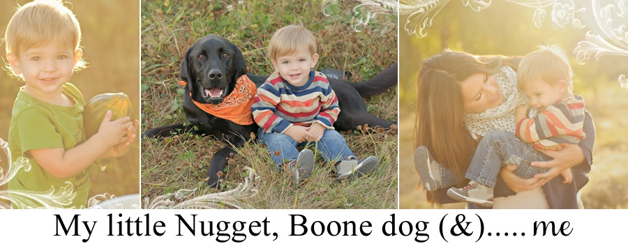 A Little Nugget, Boone dog &...and Me