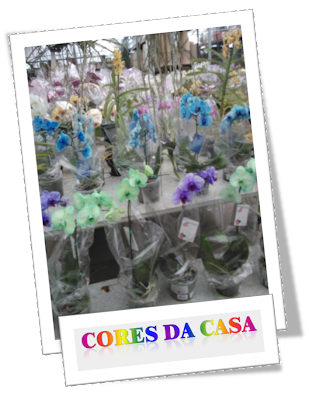 orquídea azul orquídea verde