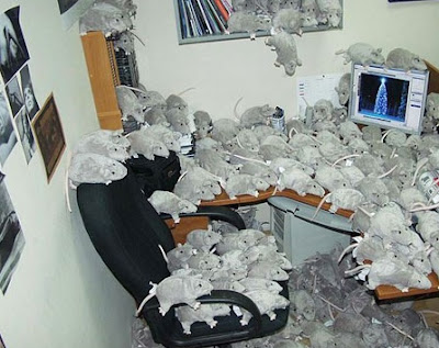 office prank 13085 Funny Pictures: 30 Great Office Pranks.