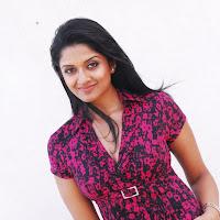 Vimala Raman Latest Photoshoot Gallery