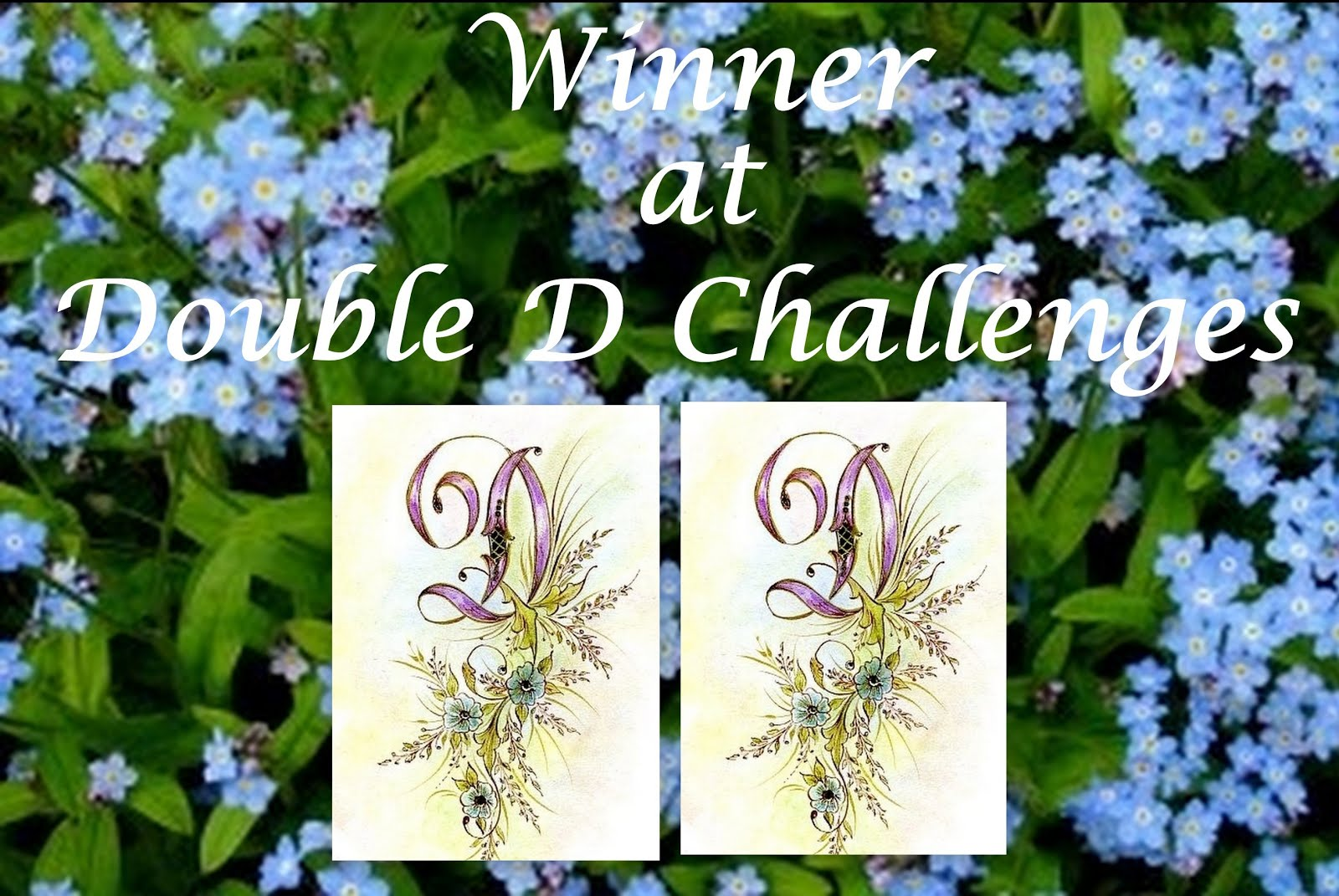 "Winner at Double ""D""January 2016"