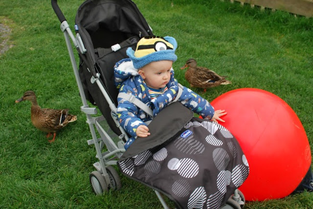 Baby in buggy with 2 ducks and red ball