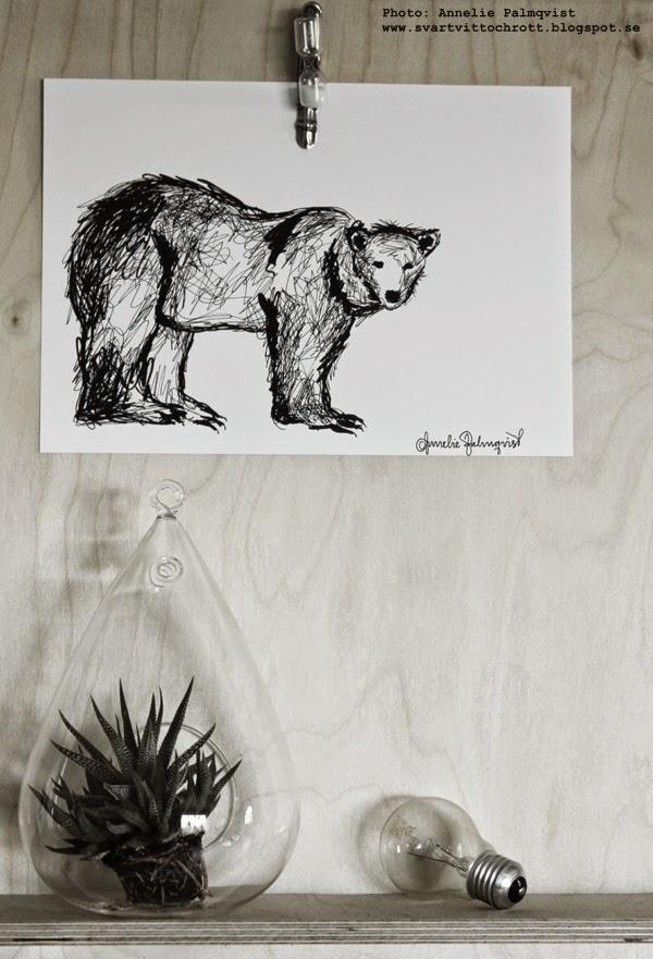 tavla isbjärn, svartvita tavlor, svart och vitt, svarta och vita, prints, konsttryck, annelie palmqvist, poster, art, plywood, på väggen, tusch