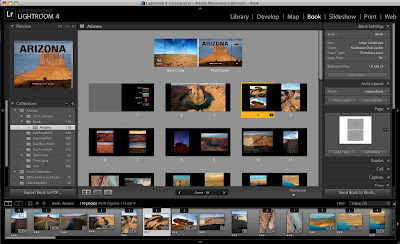 Screen shot of book module in Adobe Lightroom 4.