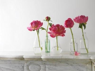 8 Flores em garrafas...!