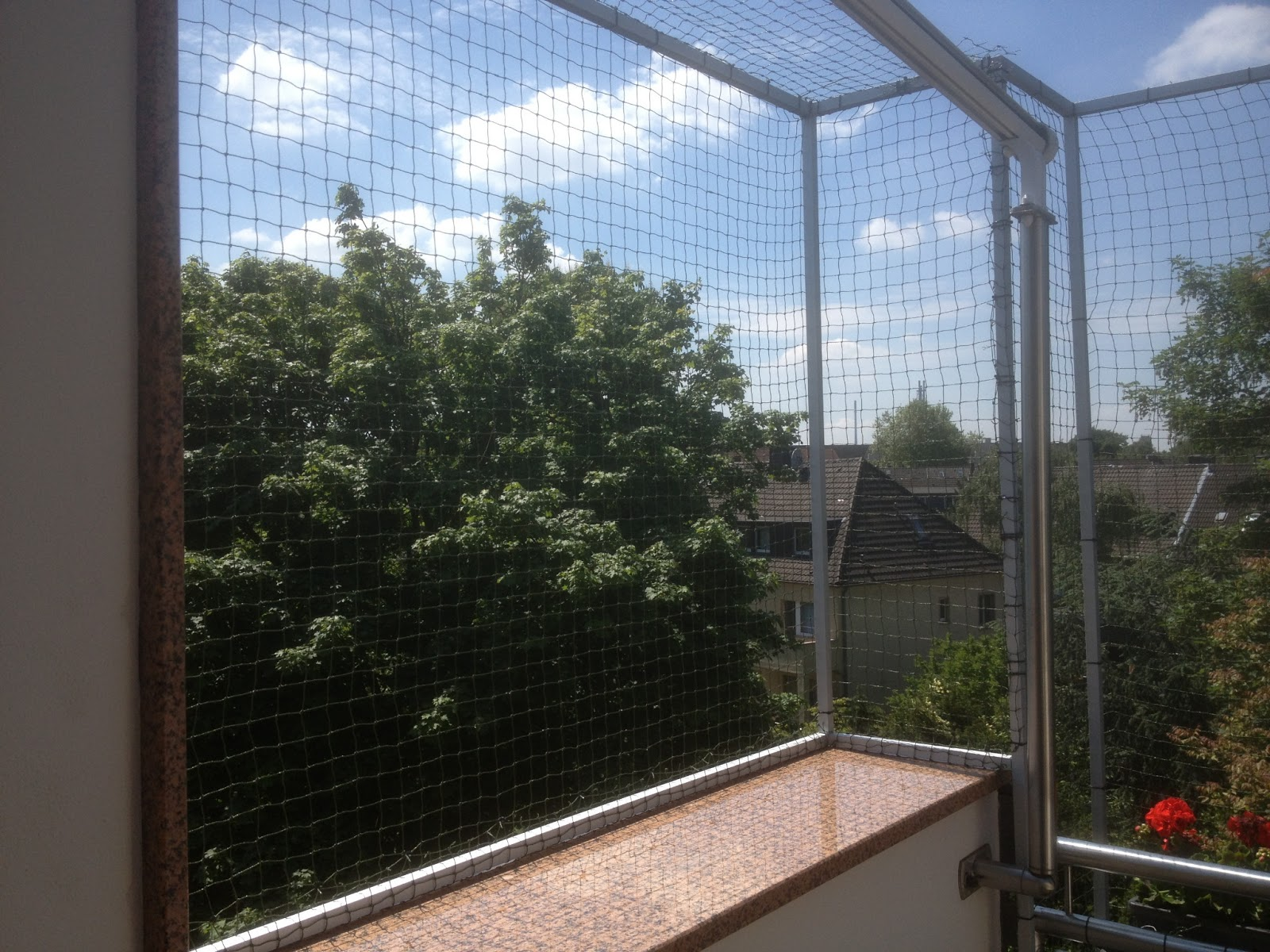 katzennetz nrw die adresse f r ein katzennetz katzennetz dachterrasse in duisburg katzennetz. Black Bedroom Furniture Sets. Home Design Ideas