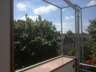 Katzennetz Duisburg