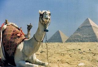 cuento-sufi-siria-grandet-reflexión-ata-tu-camello