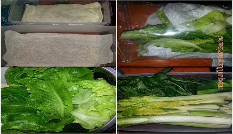 preservando los alimentos
