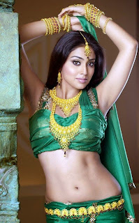 Shreya Saran Navel show Picture
