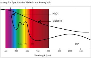 A luz pulsada é absorvida pela hemoglobina, molécula que existem dentro dos glóbulos vermelhos do sangue