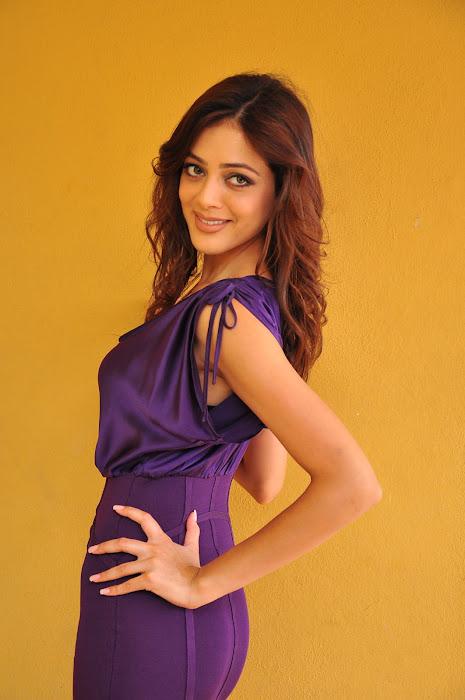 parvathi melton actress pics