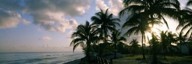 Vista de La Playa de Varadero, Cuba
