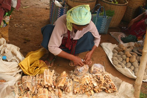 Burmese hill tribe villager selling bark at Indein market