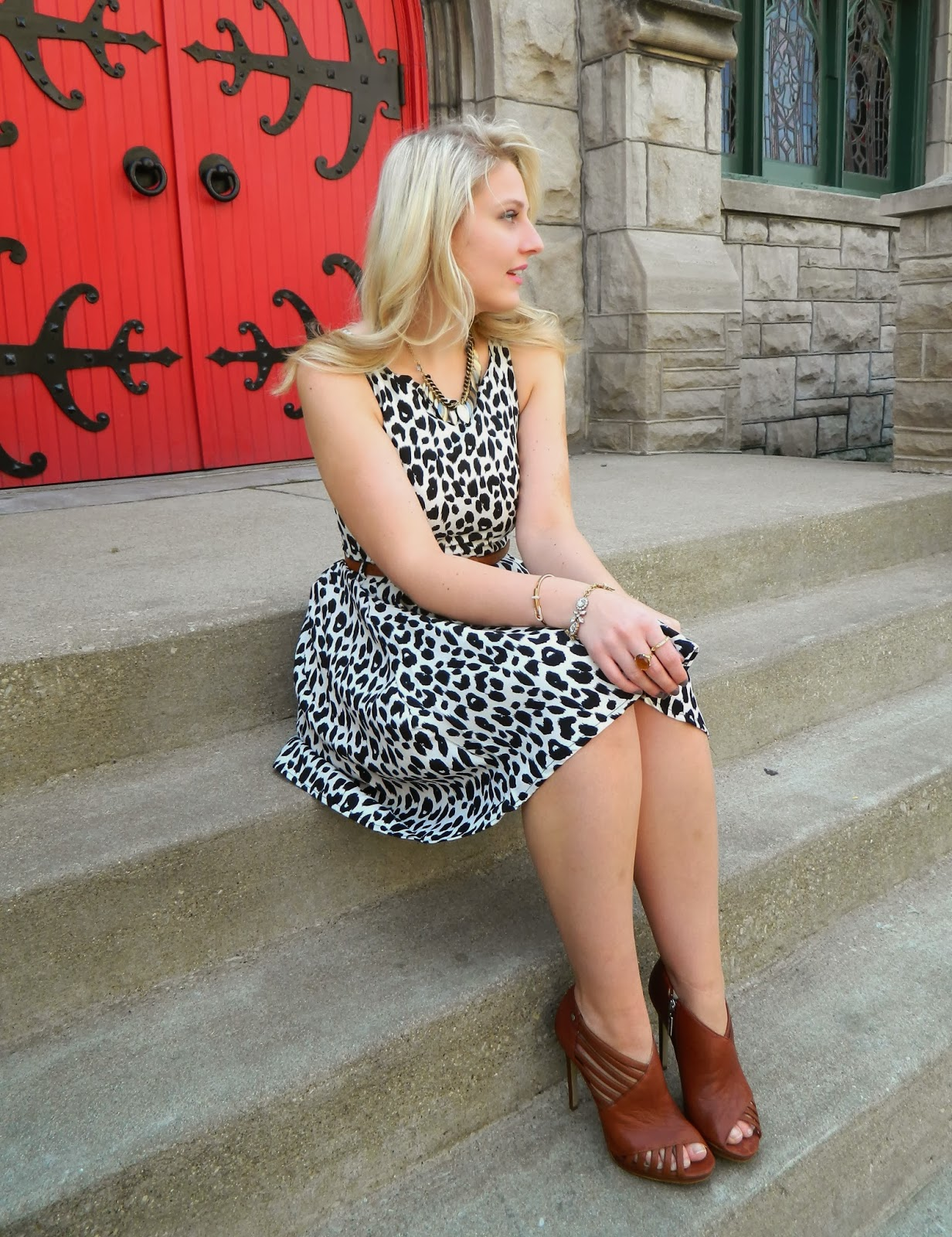 fall dress, fall leopard dress, leopard print dress, leopard for fall