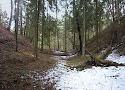 Lietuvas pilskalni