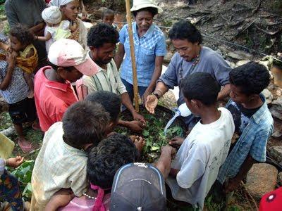 Timor-Leste: Ministério das Finanças apresenta resultados dos Censos na sexta-feira