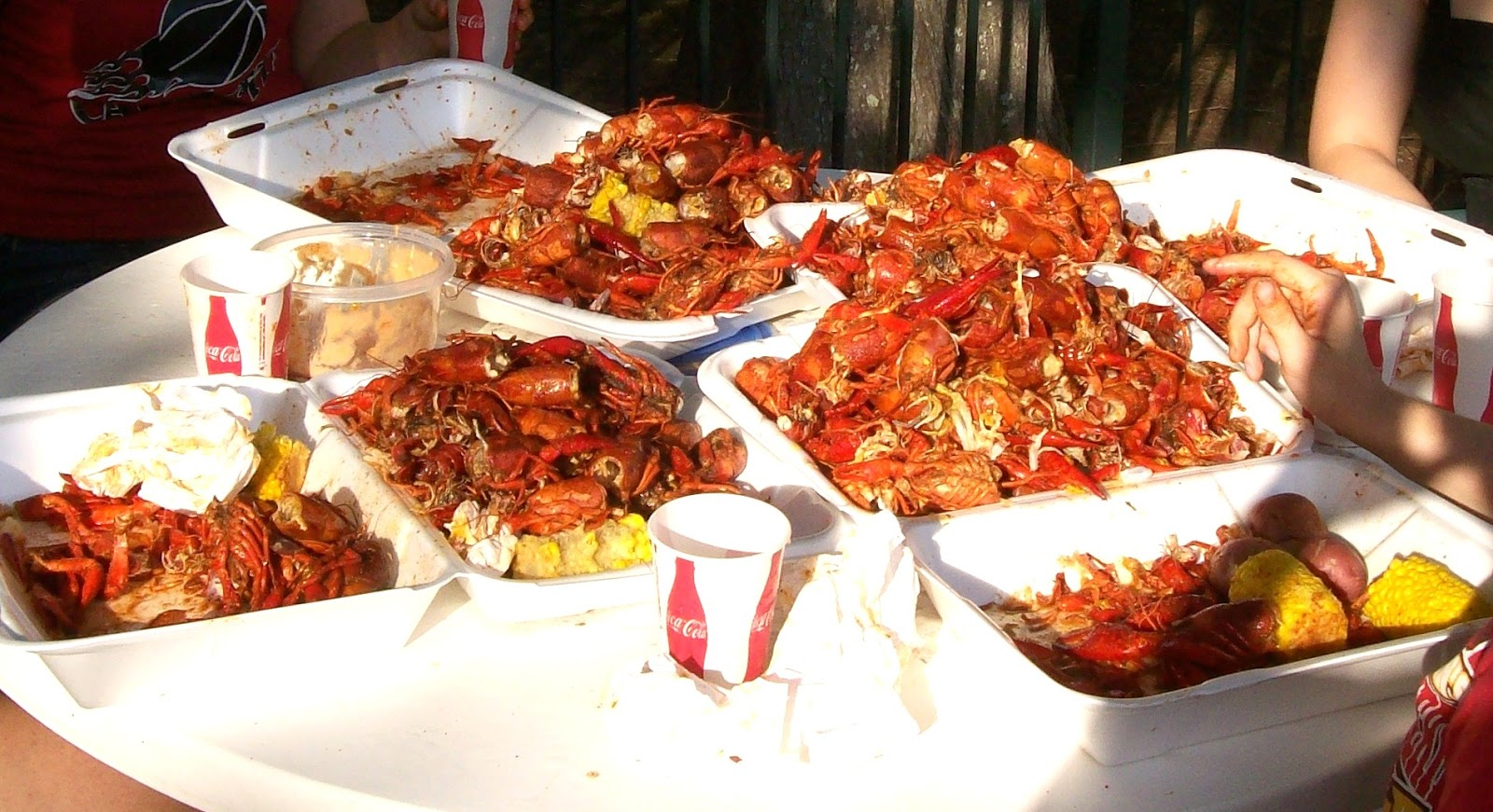 And Tomorrow And Sunday We'll Be Going To The Crawfish Festival, In Breaux