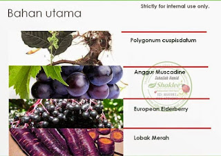 anggur muscadine