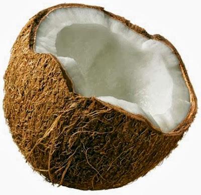 hubungan buah kelapa dan kolesterol