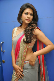 Actress Shraddha Das  Picture Gallery in Saree at Rey Movie Teaser Launch  0010.jpg