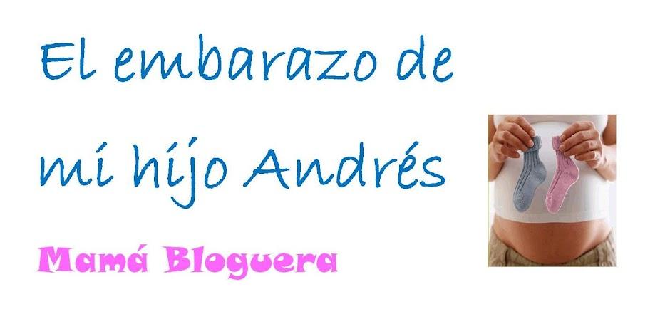 El embarazo de mi hijo Andrés (Mamá bloguera)