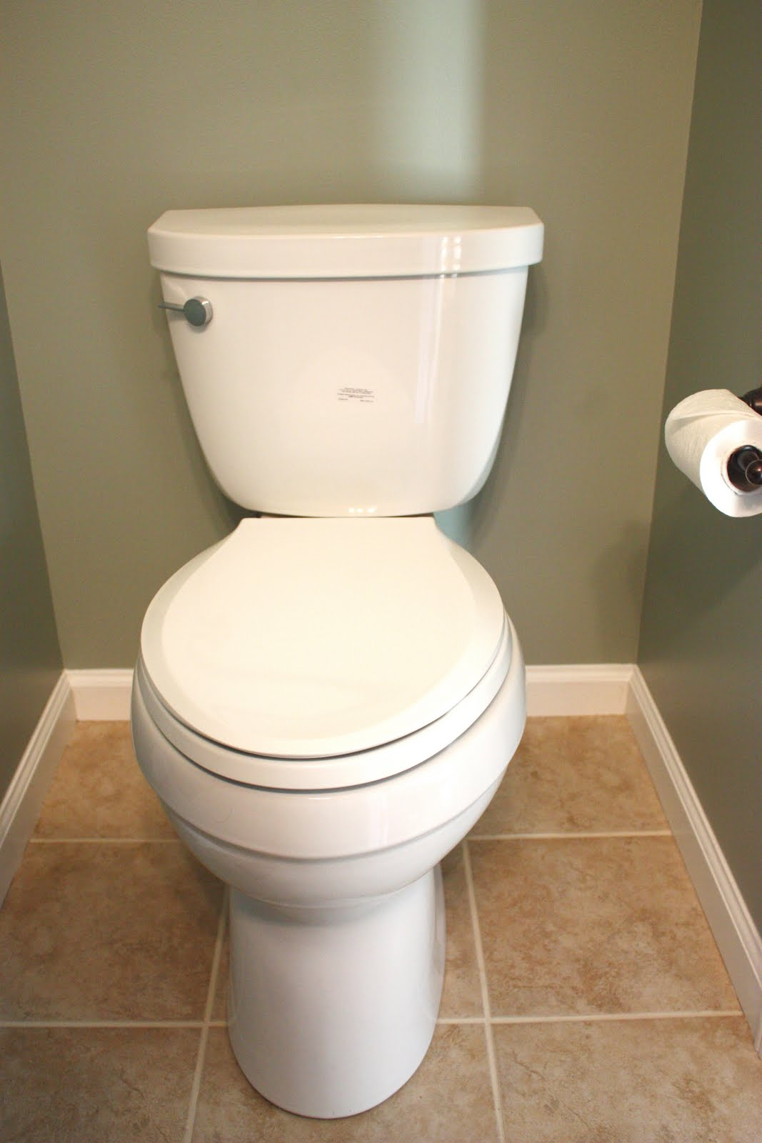 Remodeling? Buy This Toilet!