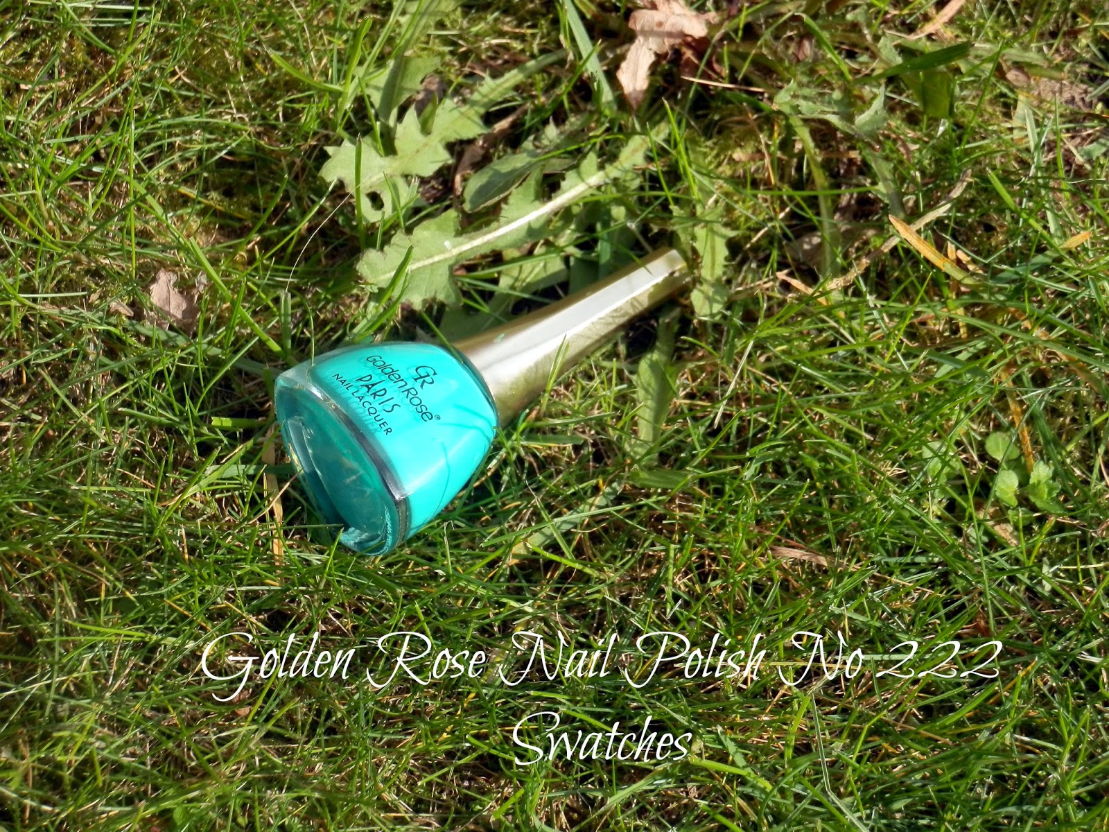 Golden Rose Nail Polish No 222 Swatches