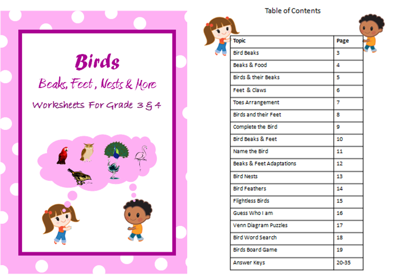 Worksheets on Birds Beaks, Feet, Nests, Feathers