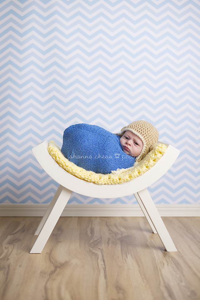 eugene, or newborn photography curved bench