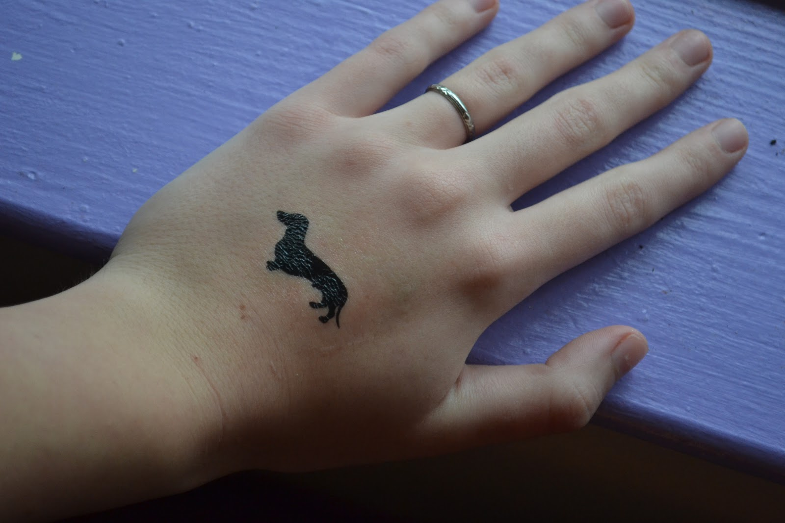 Dachshund Dog Tattoos Designs | Dog Breeds Picture