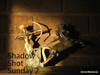 http://shadowshotsunday2.blogspot.com.au/