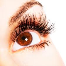 how to grow and thicken your eyelashes