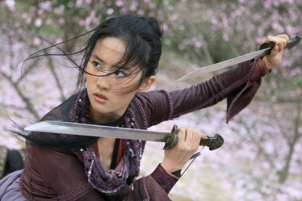 crystal liu yifei in forbidden kingdom photo 03