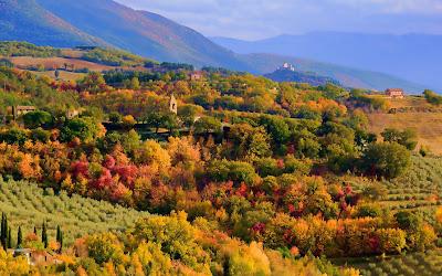 Los colores de la naturaleza (Autumn)