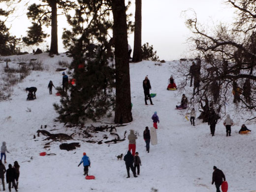 Rare San Diego Snow Day photo and story by Stacey Kuhns