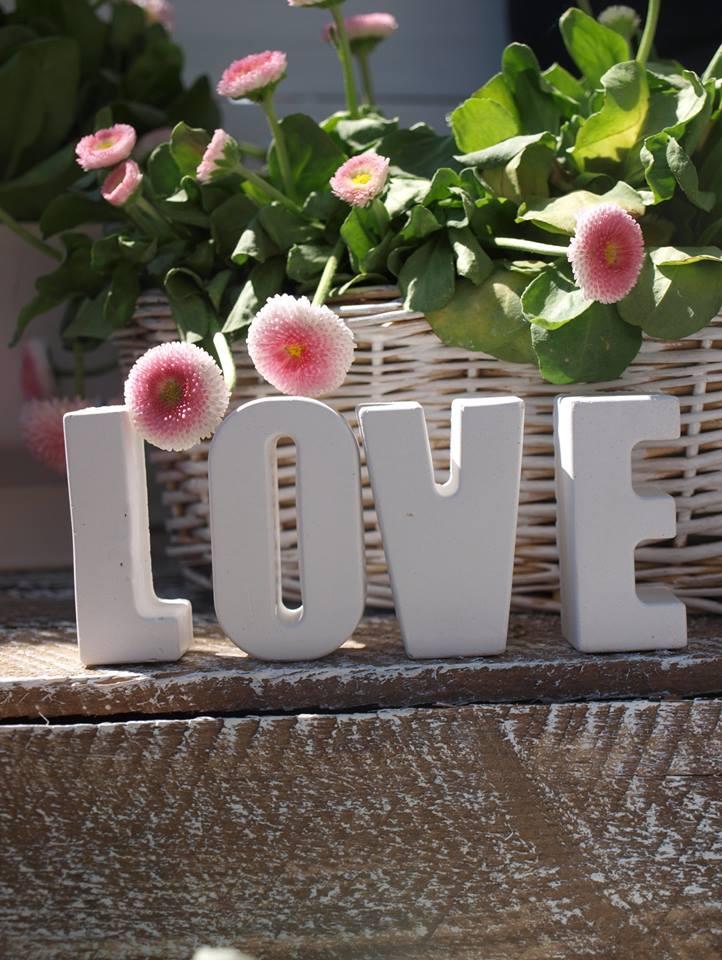 gipsowe love