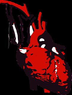 Blalock Taussig shunt