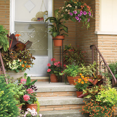 Home small potted gardens ideas.