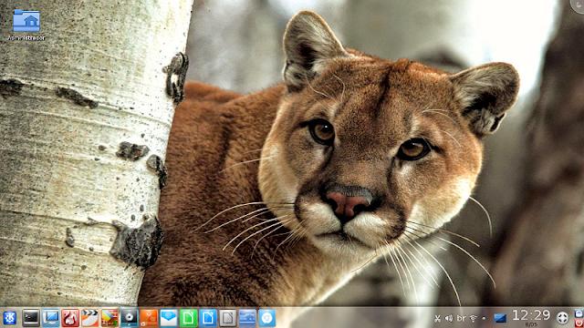 Metamorphose Linux Puma com KDE