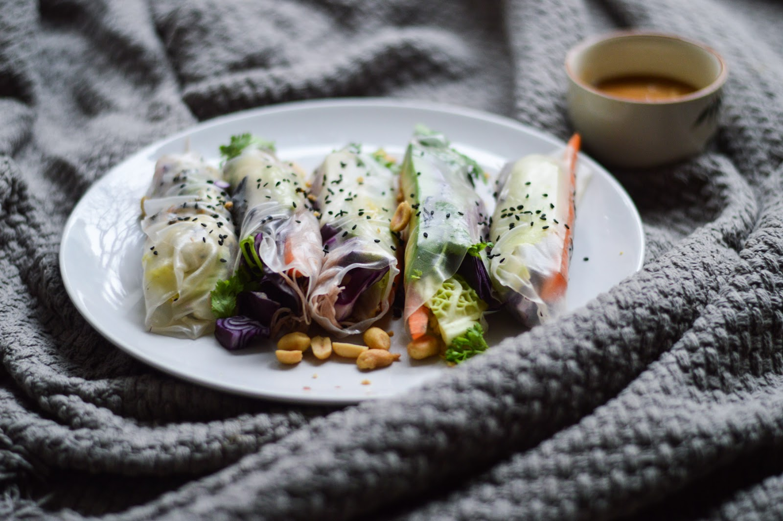 Vegan Summer Rolls | Dogdays of Summer Blog